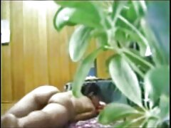 オンドリの短い髪の偉大な愛の美しさ 女 えろ 動画